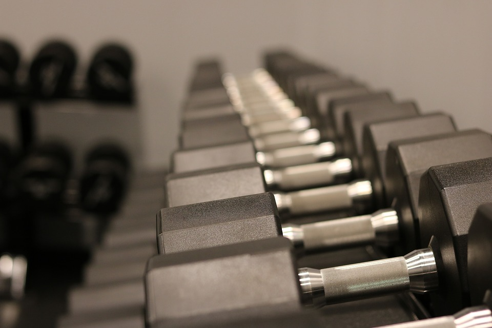 weights and dumbbells in a gym